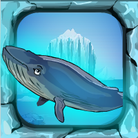 BLUE WHALE RESCUE ESCAPE GAME