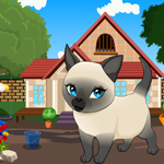 Tonkinese Cat Rescue Game