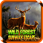 Wild Forest Subway Escape