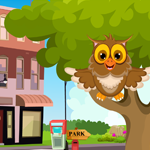 Games4King Cute Owl Rescue