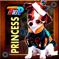 Thanksgiving Rescue The Princess Pet
