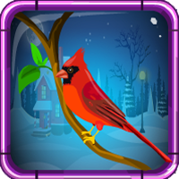 Games4Escape Red Cardinal Rescue
