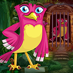 Games4king Rosy Bird Rescue Game