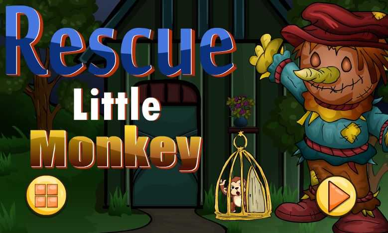 Little Monkey Rescue
