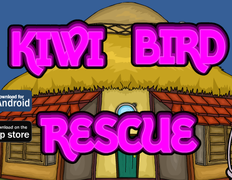 Games2Jolly Kiwi Bird Rescue