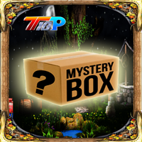 Find The Mystery Mask Box