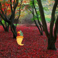 BigEscapeGames Thanksgiving Red Autumn Forest Escape